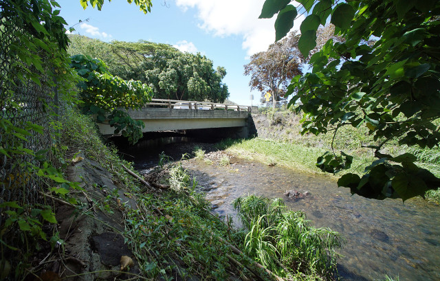 Manoa Stream Bridge, site of the 2004 flooding. At this moment there is about 5-feet of space under the bridge. 28 aug 2015. photograph Cory Lum/CIvil Beat