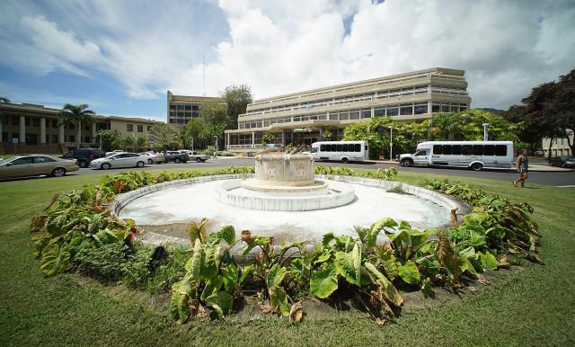 University of Hawaii at Manoa, Varney Circle. 2 sept 2015. photograph Cory Lum/Civil Beat