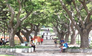 Foreign Student Spending in Hawaii Decreases By 25 Percent