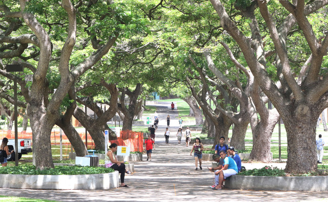 University of Hawaii. McCarthy Mall. 2 sept 2015. photograph Cory Lum/Civil Beat