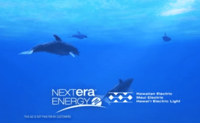NextEra Energy has taken out ads that say how great merging with Hawaiian Electric would be.
