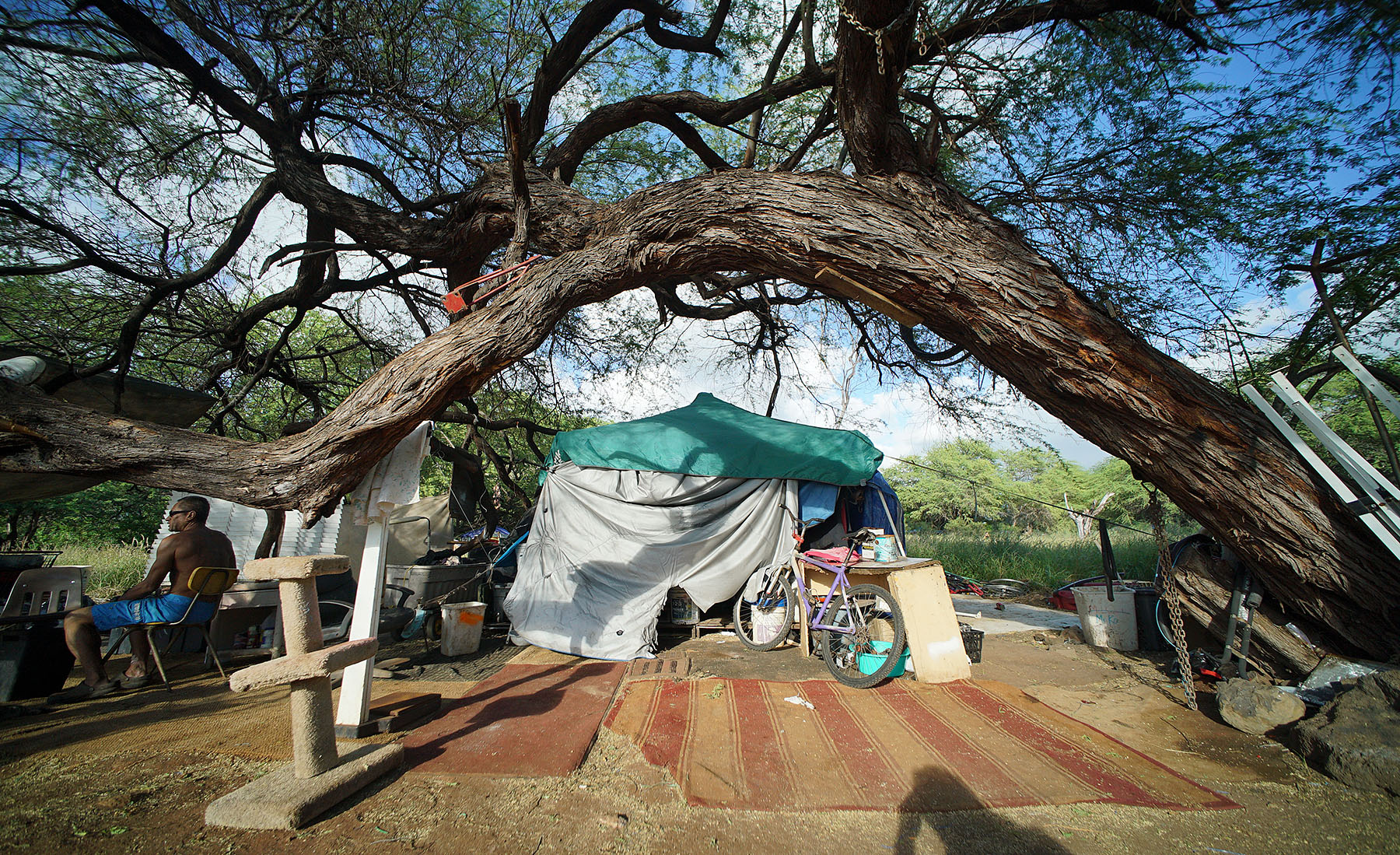 <p>Jay&#8217;s favorite feature of his campsite is the partially fallen kiawe tree. He hauls several buckets of water each day to tend his nearby garden.</p>