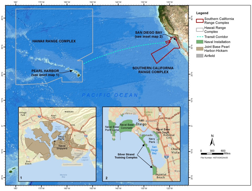 Impact Of Sonar, Explosives Studied