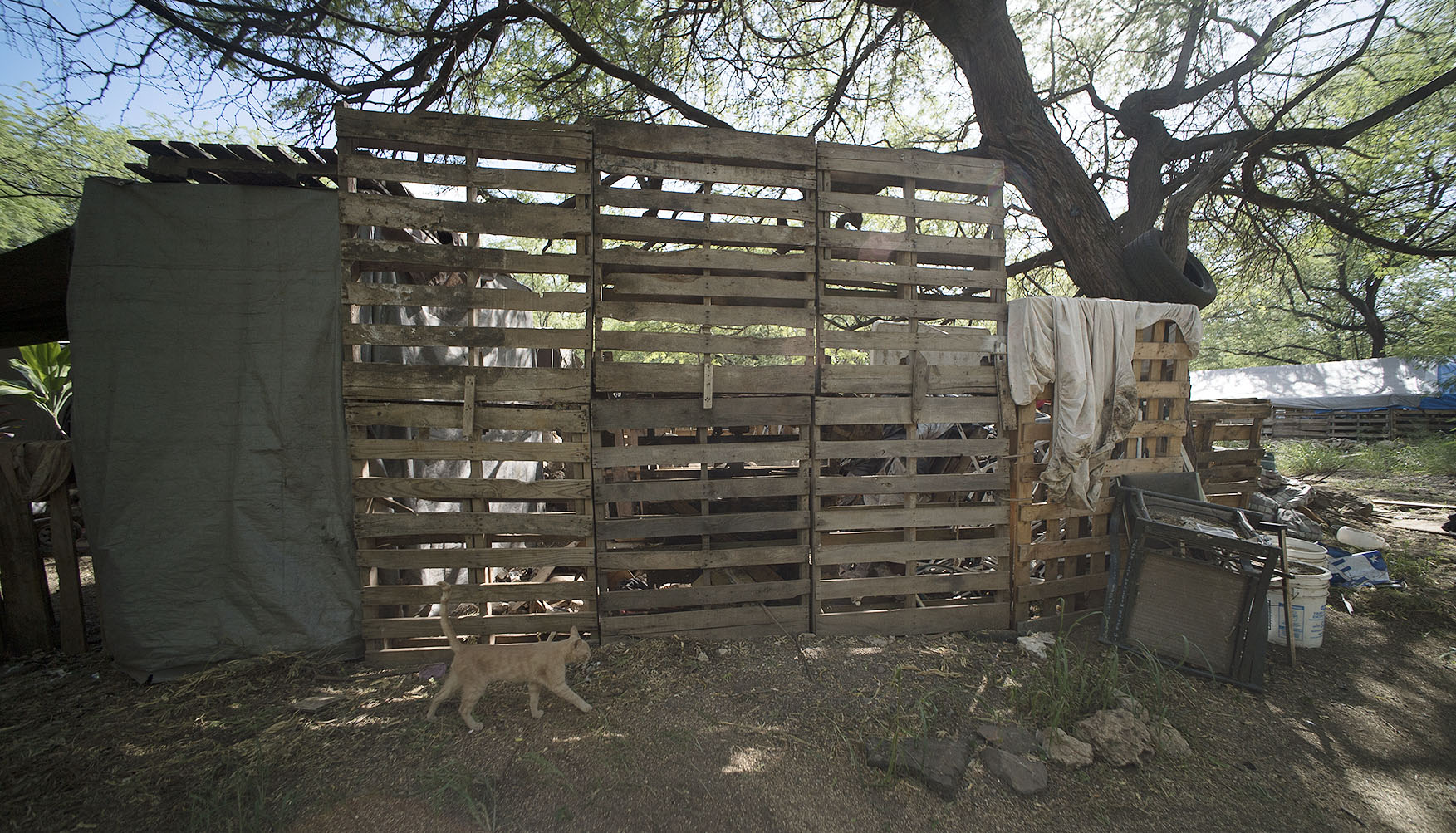 <p>Wood pallets are the basic building blocks of most structures in The Harbor.</p>