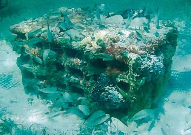 A holed reef module in the Bahamas is surrounded by fish and overgrown with coral and sponges.