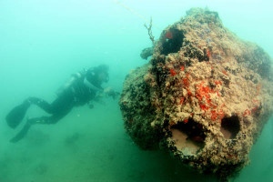 Photos Show Plane Sunk In '41 Attack