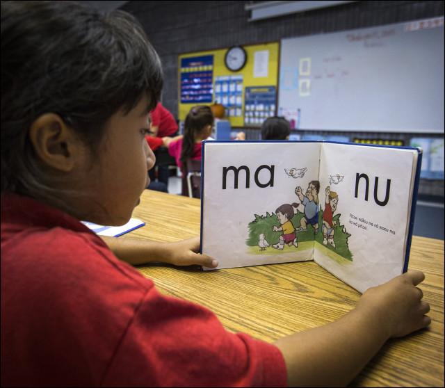 Elementary student in class at the Nawahiokalani'opu'u Hawaiian Immersion School in Keaau, Hawaii.