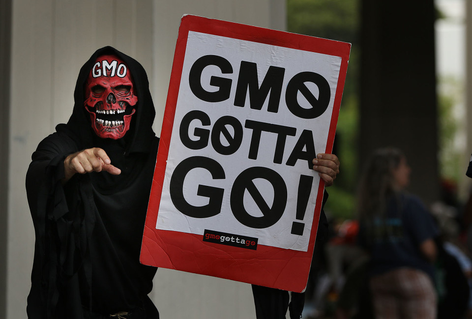 Hawaii's Trifecta of GMO Cases Will Be Heard By Appeals Court In June