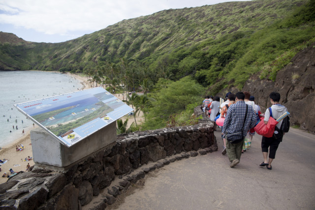 Tourists enjoy the walk down the small road leading to picturesque Hanauma Bay.