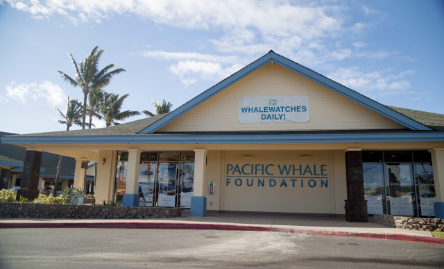 The Pacific Whale Foundation store at Maalaea Harbor.