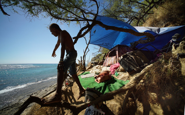 Diamond Head slopes homeless Michael Oliver stands on some Kiawe roots near his tent. Denby story.