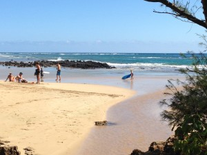 State's Fecal-Bacteria Testing To Close Kauai Beach