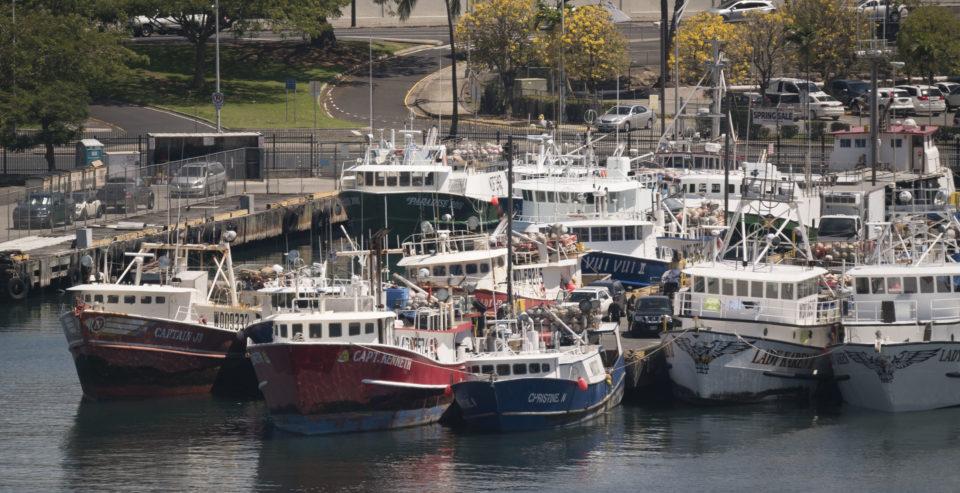 Blown Deadlines Weaken Hawaii's Voice On Federal Fishery Council