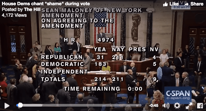 'Chaos' In US House Floor Vote