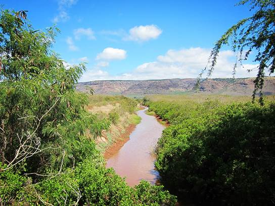 Majors Bay is one site that Earthjustice said has been affected by Mana Plain drainage waters.