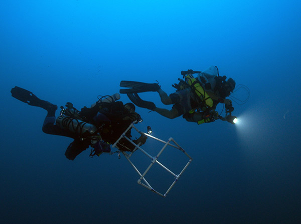 NOAA scientist Brian Hauk and Bishop Museum scientist Richard Pyle descend to a reef at 300 feet on Pioneer Bank in Papahanaumokuakea Marine National Monument.