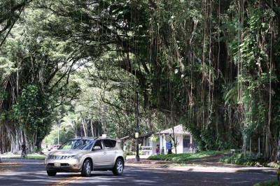 No Time Like The Present To Revitalize Hilo