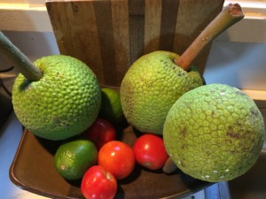 Denby Fawcett: Breadfruit Can Feed A Hungry World