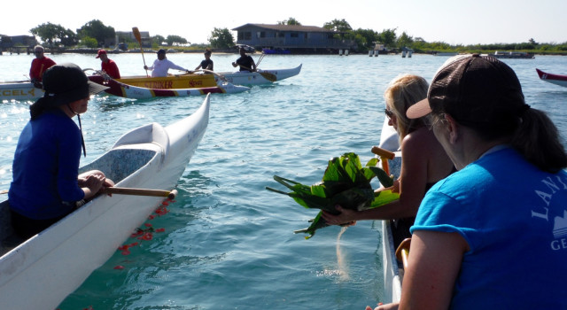 Canoe club members scatter the ashes of their unofficial mascot, an endangered Hawaiian monk seal called Uilani, that frequented Keehi Harbor where they practiced.