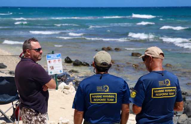 David Schofield, NOAA marine mamal health and response program coordinator, surveys an area on the north shore of Oahu with Marine Mammal Response Team volunteers, July 8, 2016.