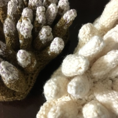 Crocheted models of Acropora coral species.