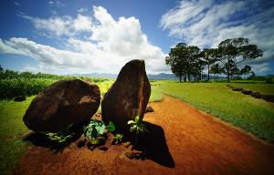 Peter Apo: Preserving Kukaniloko, Most Sacred Of Hawaiian Places