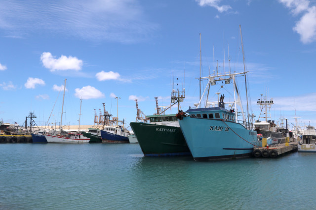 Hawaii longline fishing vessels are docked at Pier 38 in Honolulu.