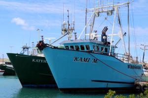 It Looks Like Another Good Year For Hawaii Tuna Fishermen