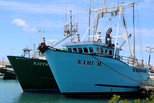 Uncertainty over trump won 39 t derail palau 39 s marine reserve for Fishing supplies honolulu
