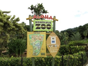 Amendment Would Help Fund Honolulu Zoo With Property Taxes