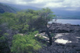 Will Popular Big Island Trail Someday Get Toilets?