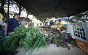 Big Island Eliminates Produce Delivery For Seniors