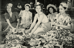 Denby Fawcett: How Hawaii's Lei Sellers Helped The War Effort