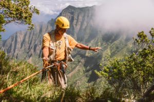 On A Mission To Save Hawaii's Most Endangered Native Plants From Extinction