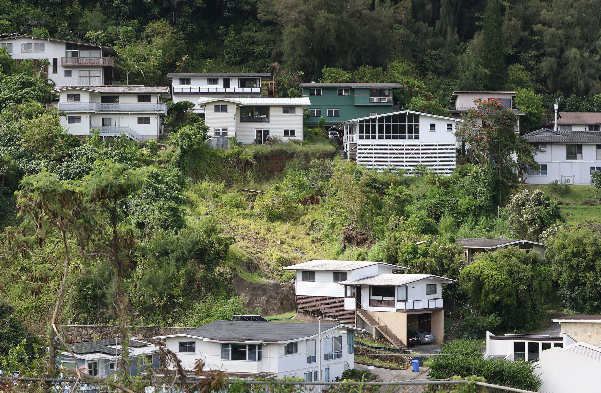 The house at right obscured by the trees is 274 Polihiwa Place with rear yard (landslide or uneven foundation) in center of photograph.