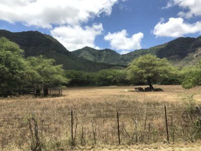 The Fight To Save Ancient Hawaiian Archeological Sites