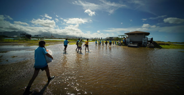 Waianae students cross thru flooded interior area of Mokauea Island.