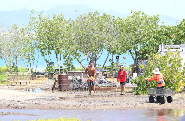 Volunteers assist with cleaning and digging a drainage area after King Tides inundated the center part of Mokauea Island on the weekend.
