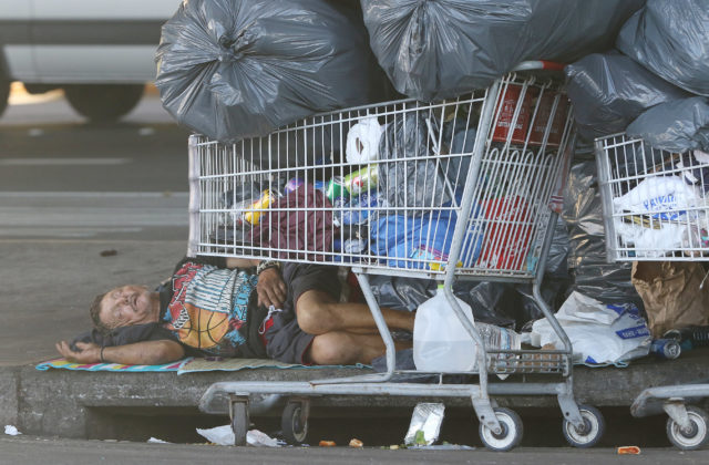 Man sleeps with large bags and shopping carts under the Nimitz Freeway.
