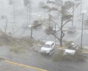 Information Vacuum Shrouds Puerto Rico Devastation