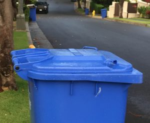 Recycle Or Incinerate? The Battle Of The Blue Bins