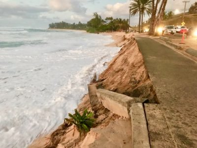 Seawalls May Protect Property But They Destroy Beaches