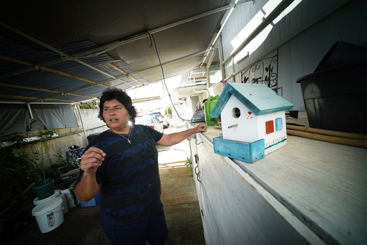 Vanessa Sylva outside her house under a corrugated roof covering where her plants and other tools are shows off her bird houses she used to make before her accident happened.