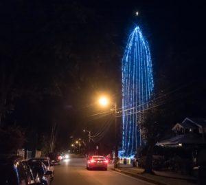 Ian Lind: How A Tree Named Bob Became A Blue Beacon Of Christmas