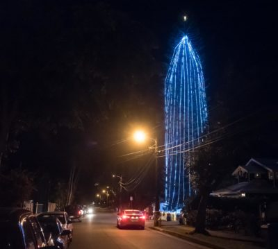 Ian Lind: How A Tree Named Bob Became A Blue Beacon Of Christmas