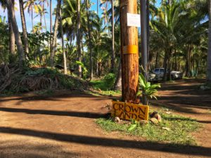 Allan Parachini: Coco Palms Battle Is A New Front In An Old War