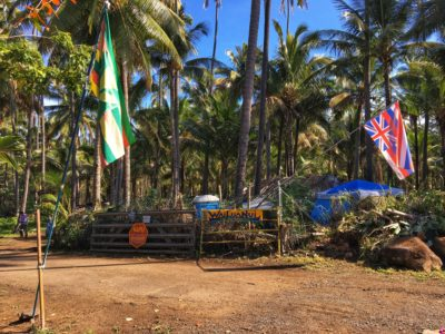 Coco Palms Developer Fights Back With Its Own Native Hawaiian Research