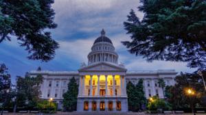 Tom Yamachika: The California Stupidity Fund