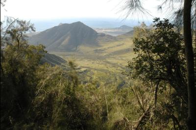 Developer Exploring Giant Wind Farm In West Oahu