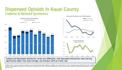 Kauai: County Will Sue Big Drug Companies Over Opioid Crisis